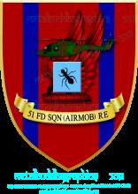 51Sqn,